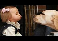 Compilation: Babies and Dogs Interacting