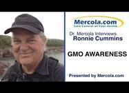 GMO Awareness Campaign Continues