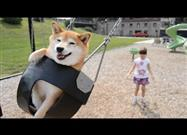 Virtual Park Tour with Phoenix (Girl) and Kitsu (Dog)