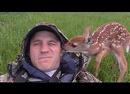 Fawn Follows Her Human Everywhere