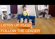 Where He Crawls, Puppies Follow