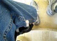 Kitten Climbing a Guy's Leg