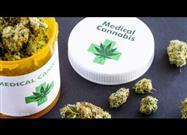 Medical Cannabis � A Vastly Underutilized Therapeutic Option?