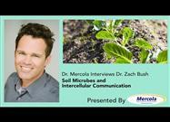 How Soil Microbes and Intercellular Communication Affects Human Health