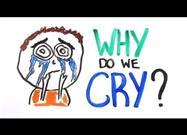 Datos Sobre las Lágrimas y la Ciencia del Llanto