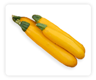 Zucchini (Summer Squash)