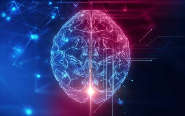 Automatic Brain