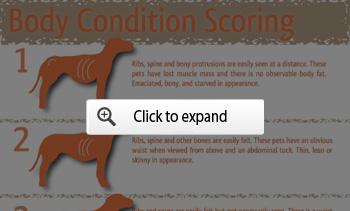 pet body condition scoring
