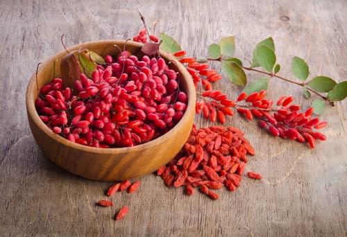 барбарис с листьями и сухие ягоды годжи