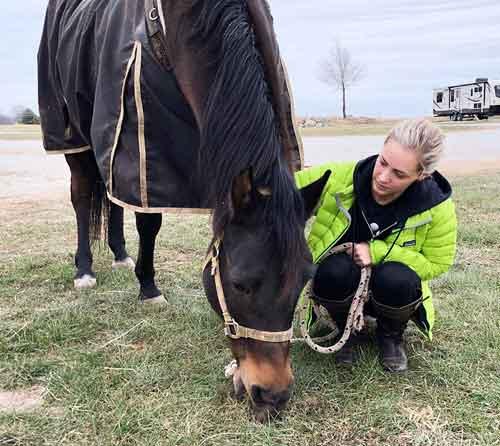 horse excellent memories