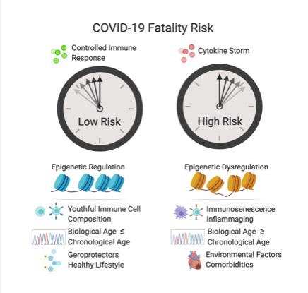 covid-19 fatality risk