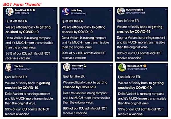 bot farm tweets