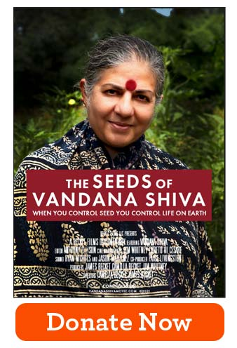 Seeds of Vandana Shiva