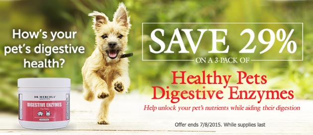 Pet Digestive Enzymes Offer
