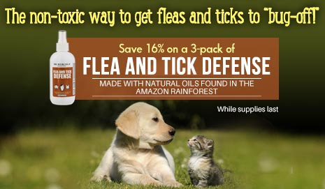 Flea and Tick Special Offer