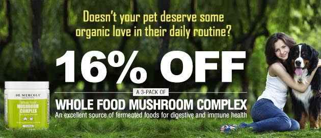 Whole Food Mushroom Complex for Pets Special Offer