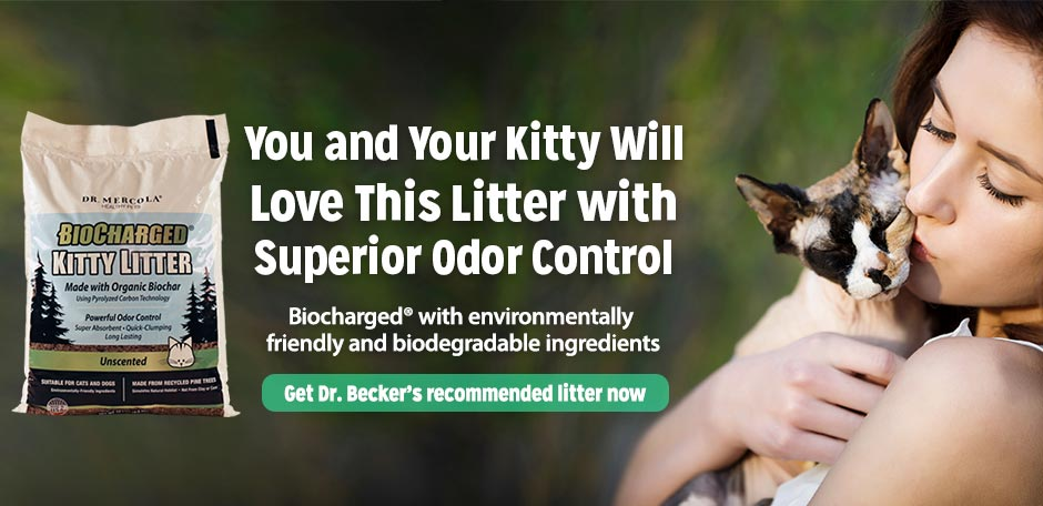 BioCharged Kitty Litter Special Offer