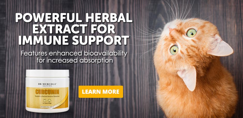 Pets Curcumin Special Offer