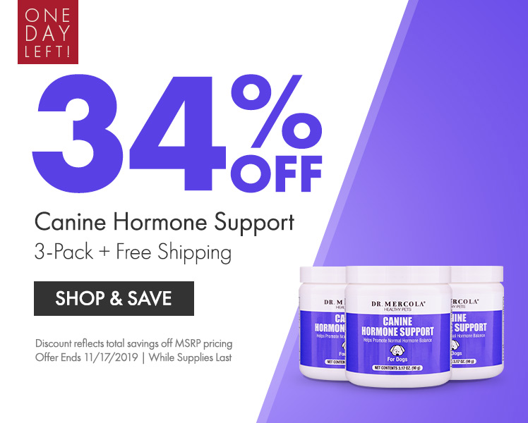 Get 34% Off on Canine Hormone Support 3-Pack