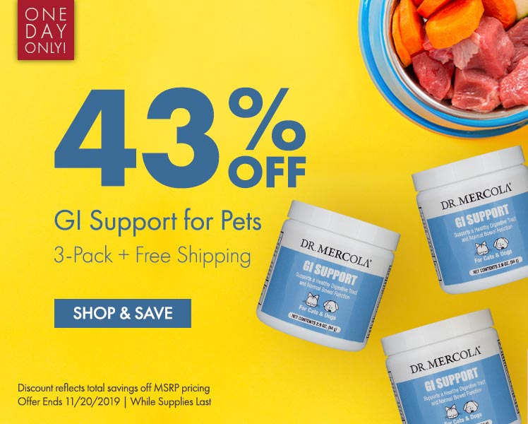 Get 43% OFF GI Support for Pets 3-Pack