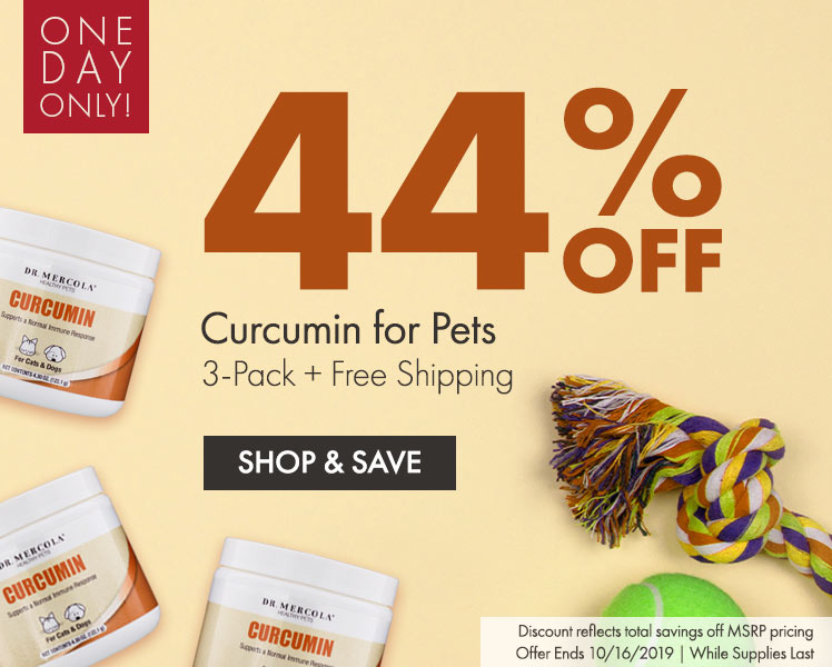 Get 44% Off Curcumin for Pets 3-Pack