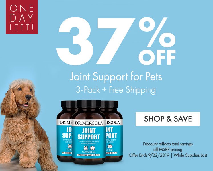 37% Off Joint Support for Pets 3-Pack
