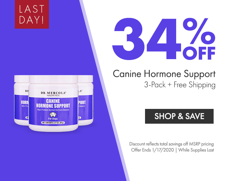 Get 34% Off Canine Hormone Support 3-Pack