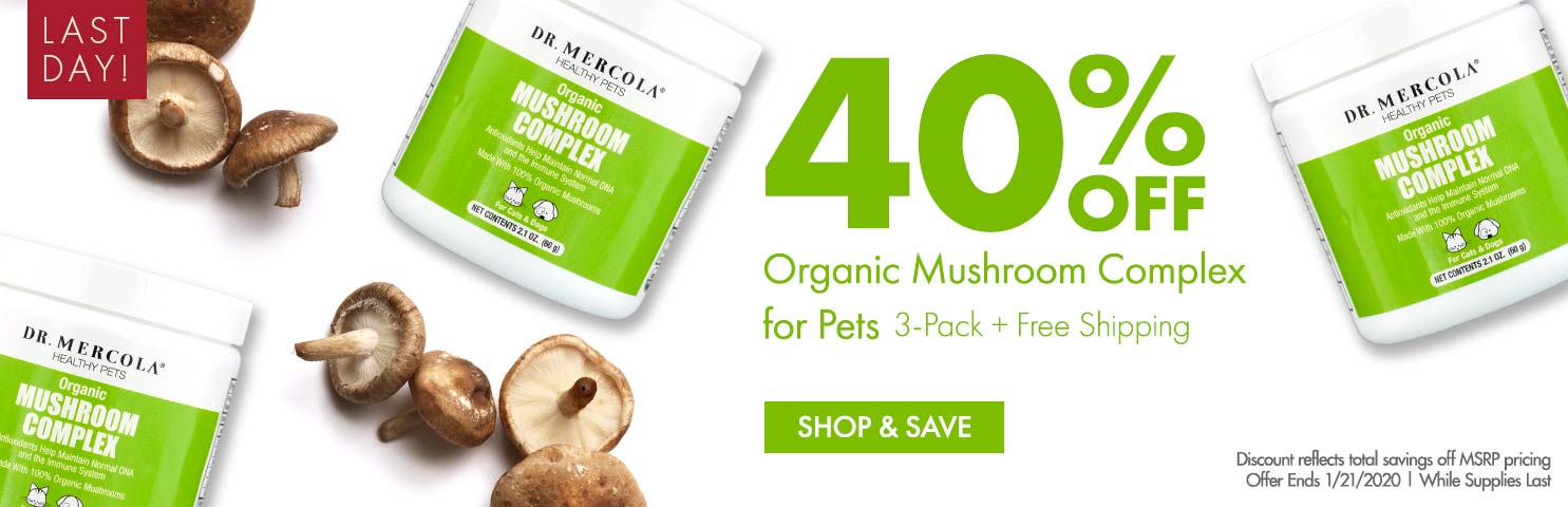 Get 40% Off Organic Mushroom Complex for Pets 3-Pack