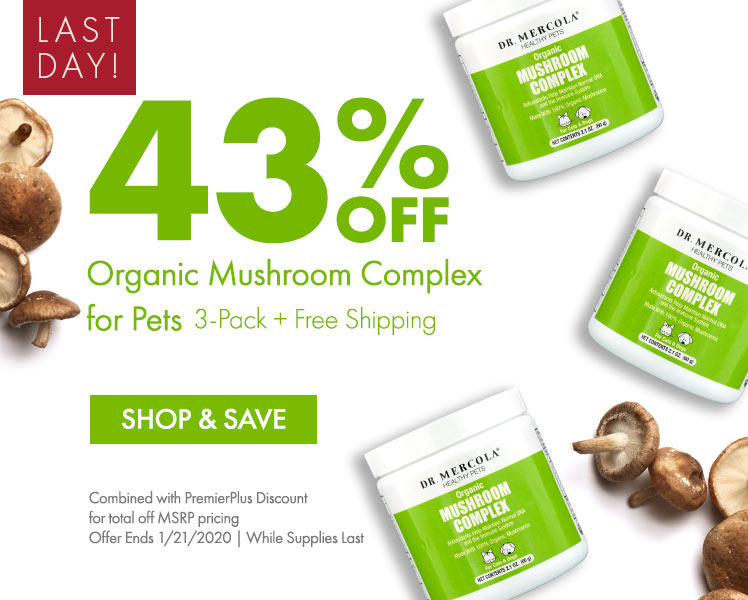 Get 43% Off Organic Mushroom Complex for Pets 3-Pack