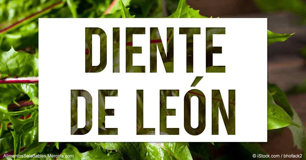Beneficios Del Diente De Leon Mercolacom