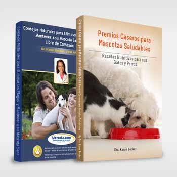 Cuidado los huesos pueden matar a su perro descubra - Todo para nuestras mascotas ...