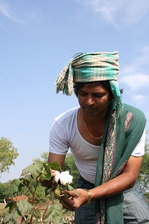 Indian cotton farmers
