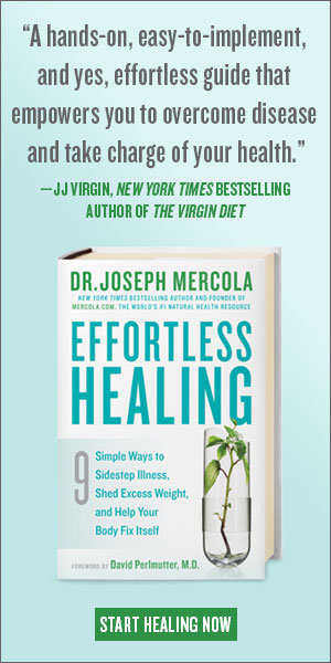 Effortless Healing Book Cover
