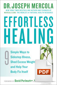 Effortless Healing Cover PDF
