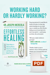 Effortless Healing Flyer PDF
