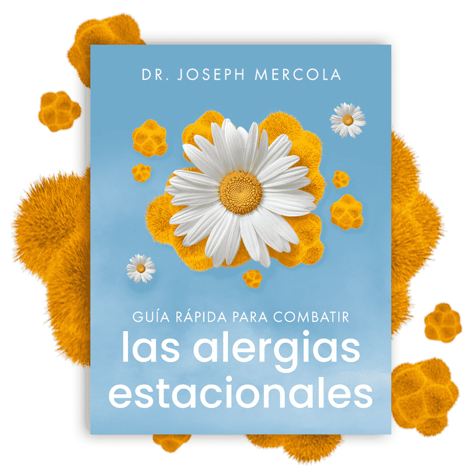 Guía Rápida para Combatir Las Alergias Estacionales