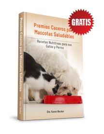 Premios Caseros para Mascotas Saludables