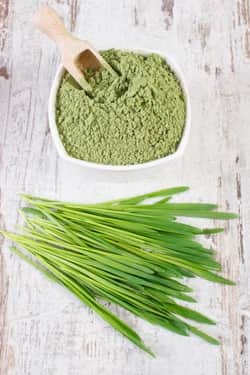 barley grass and powder