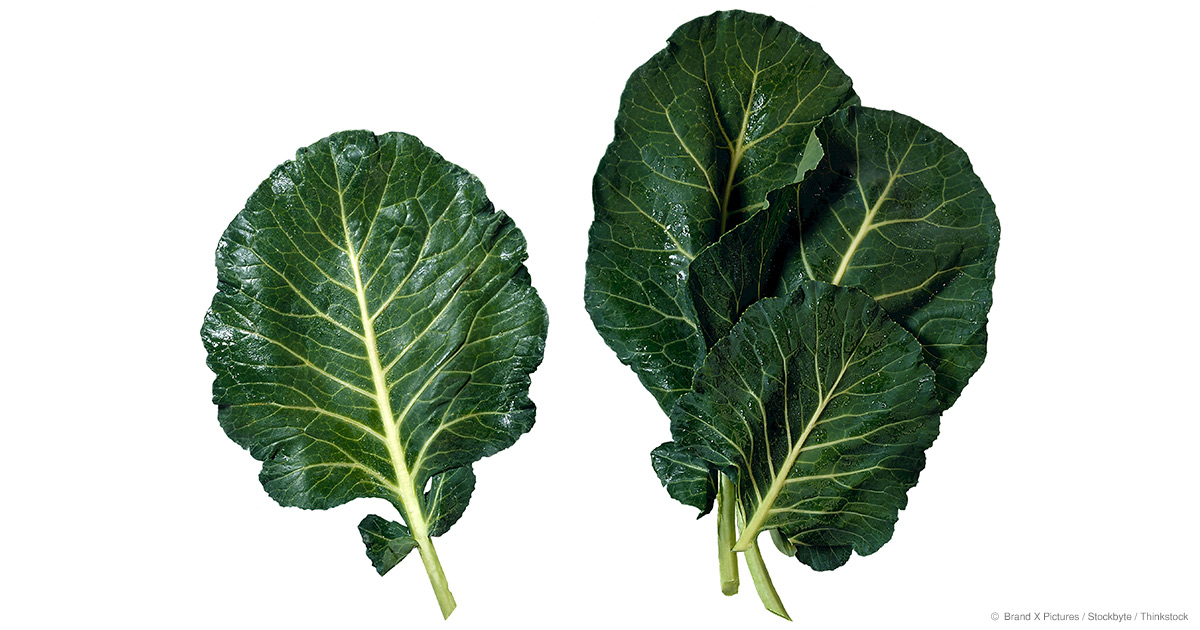 What Are Collard Greens Good For? - Mercola.com