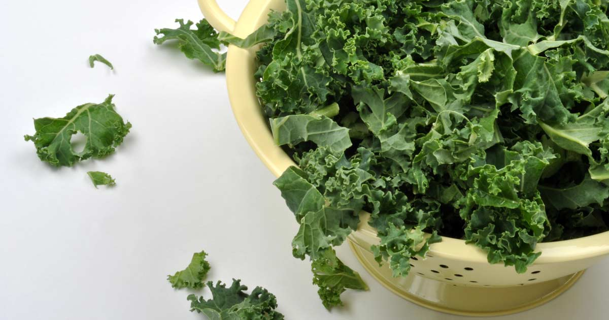 What is kale good for