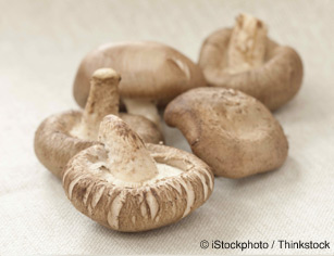 Shiitake Mushrooms  Healthy Recipes