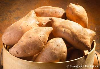 Yam Healthy Recipes