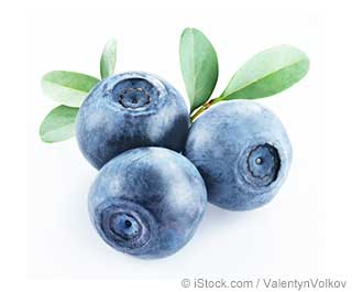 What Is Bilberry Good For?