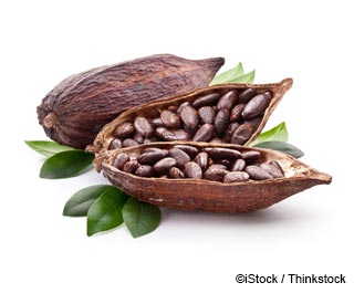 Cacao Nutrition Facts