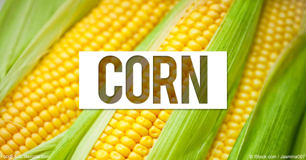 what is corn good for mercola com