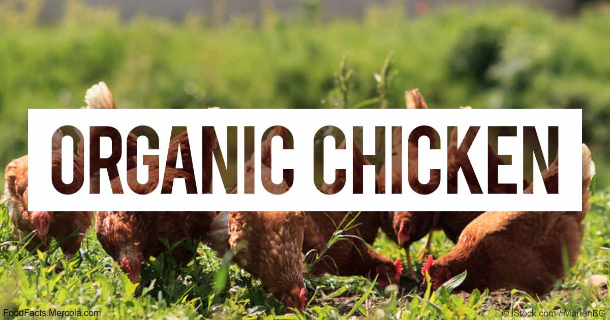 What Is Organic Pasture Raised Chicken Good For