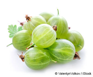 Show Pictures Of Gooseberries