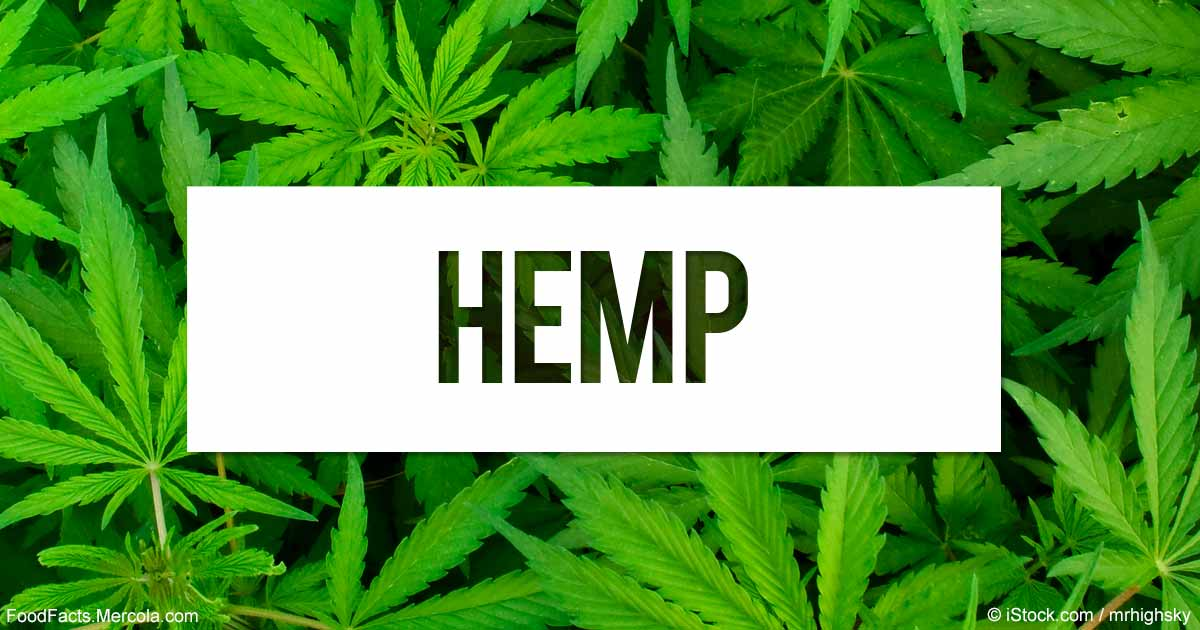 INDUSTRIAL HEMP; The 100% Earth Friendly Resource