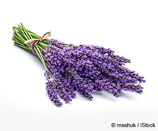 Lavender Nutrition Facts