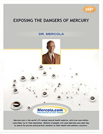 Exposing the Dangers of Mercury